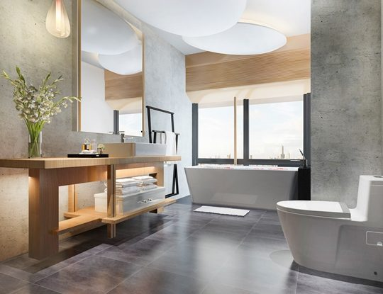Bathroom remodeling and style (2)